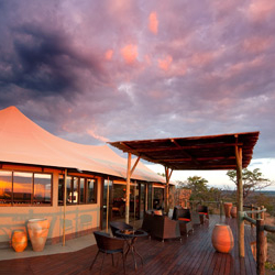 5* The Elephant Camp - Zimbabwe - '3 Nights  Promo''